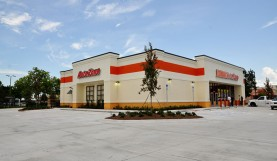 Commercial Landscaping<br>Autozone, Naples Florida