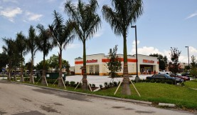 Commercial Landscaping<br>Auto Zone, Naples Florida